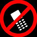 Cell Phone Usage: Passengers Versus Flight Attendants