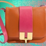 Marc Jacobs Bamboo Crossbody: The Daily Bag